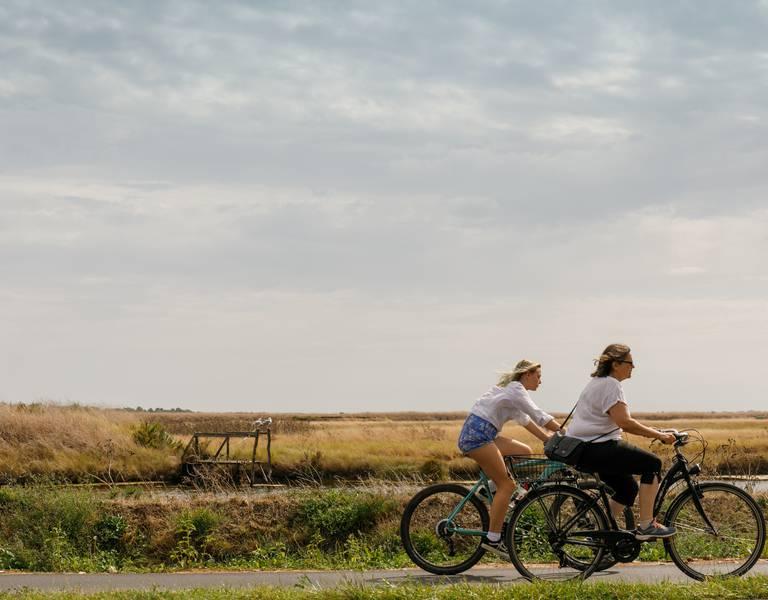 Balade à vélos sur l'Ile de Ré