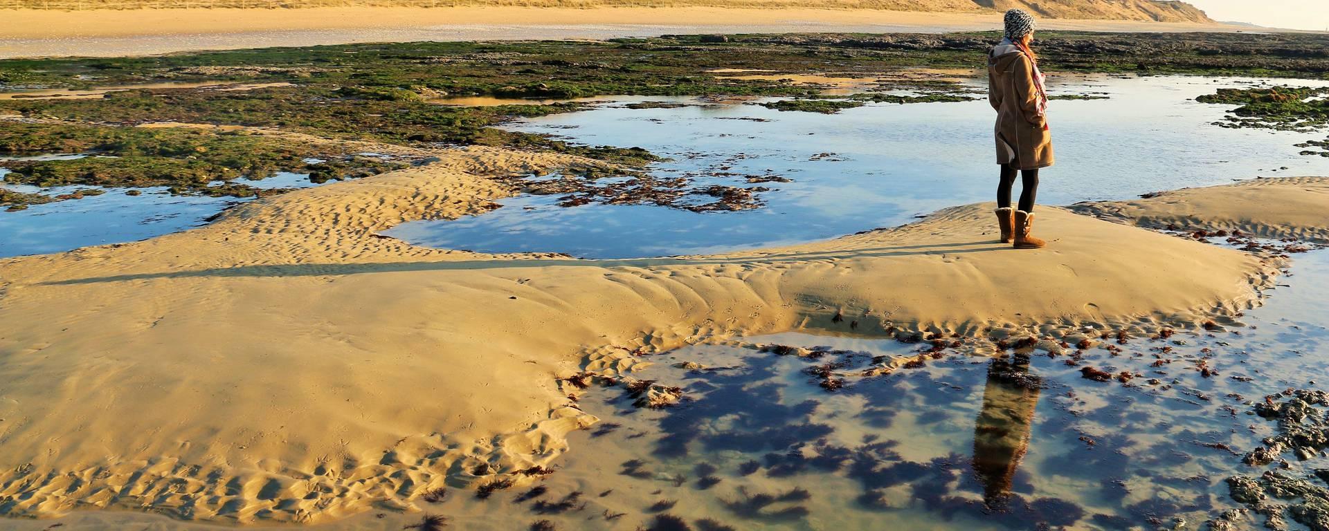 Plage de la Côte sauvage à Saint-Clément-les-Baleines