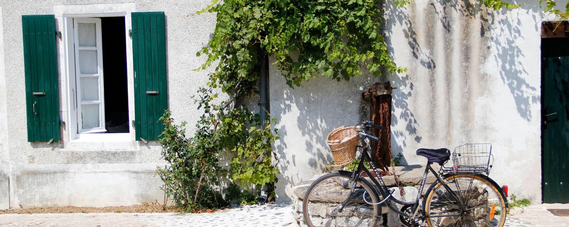 Vélo à Sainte-Marie de Ré