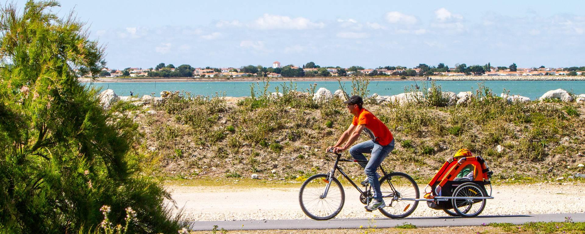 Les pistes cyclables à l'Île de Ré par François Blanchard
