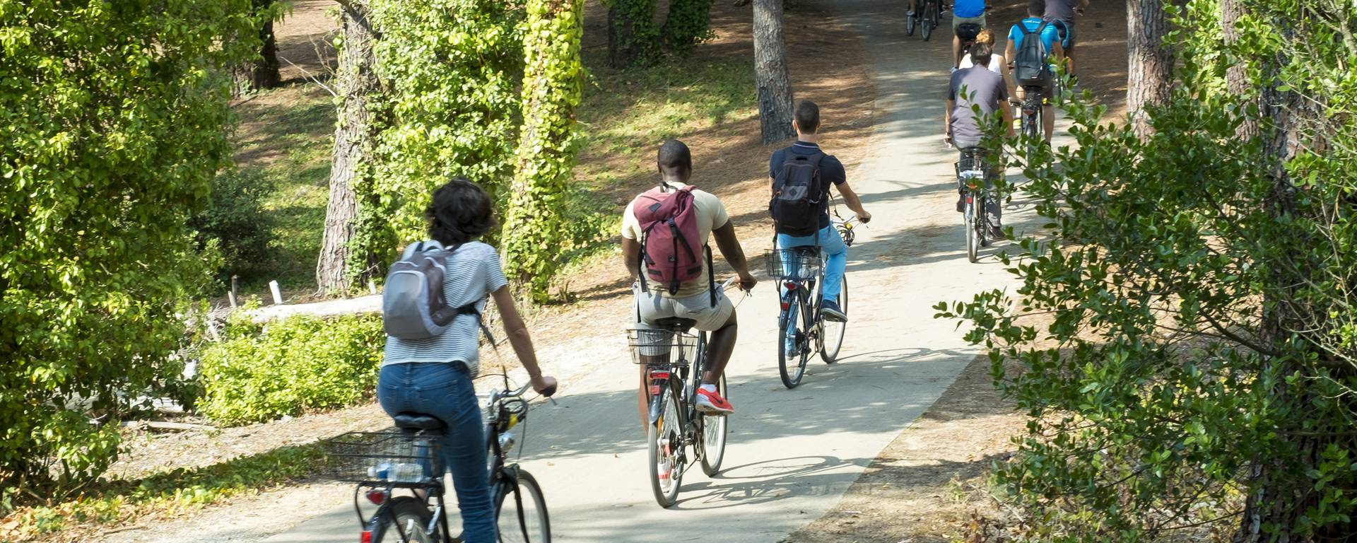 Le vélo à l'Île de Ré par Yann Werdefroy