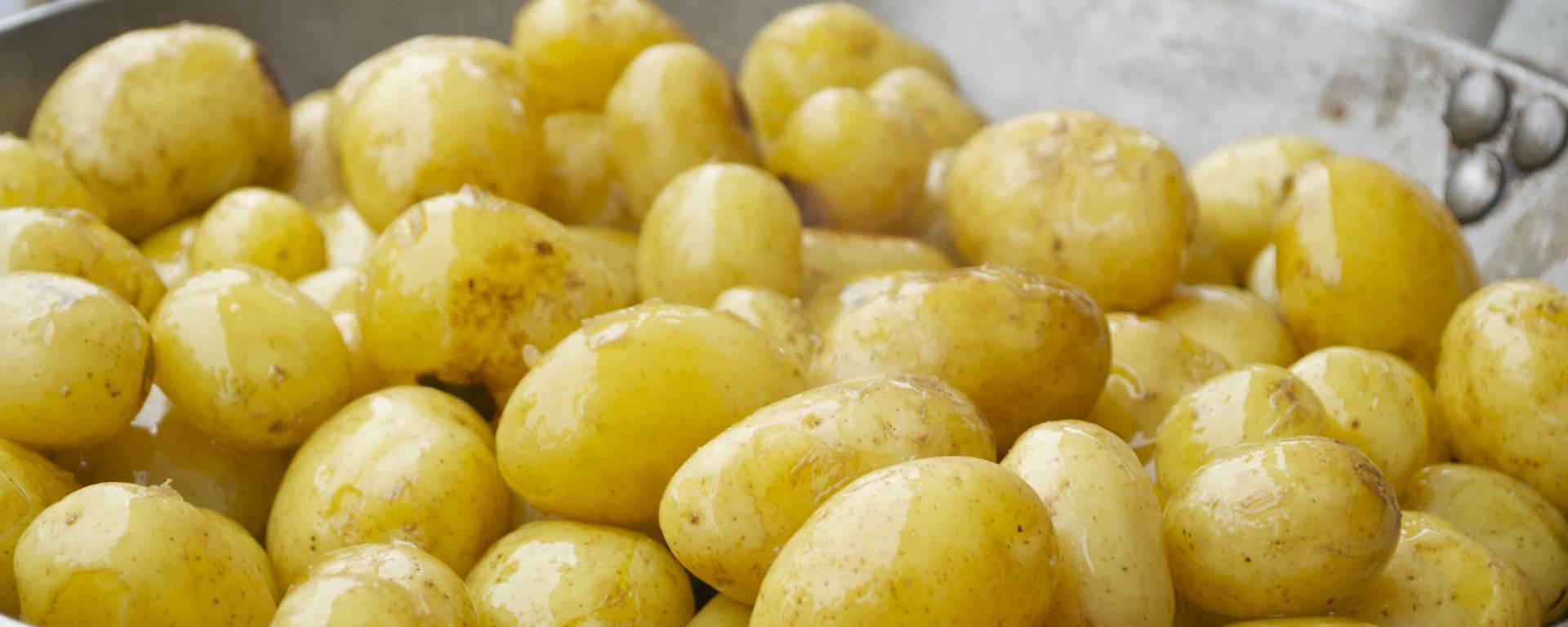 Les pommes de terre de l'Ile de Ré, Régalades 2017