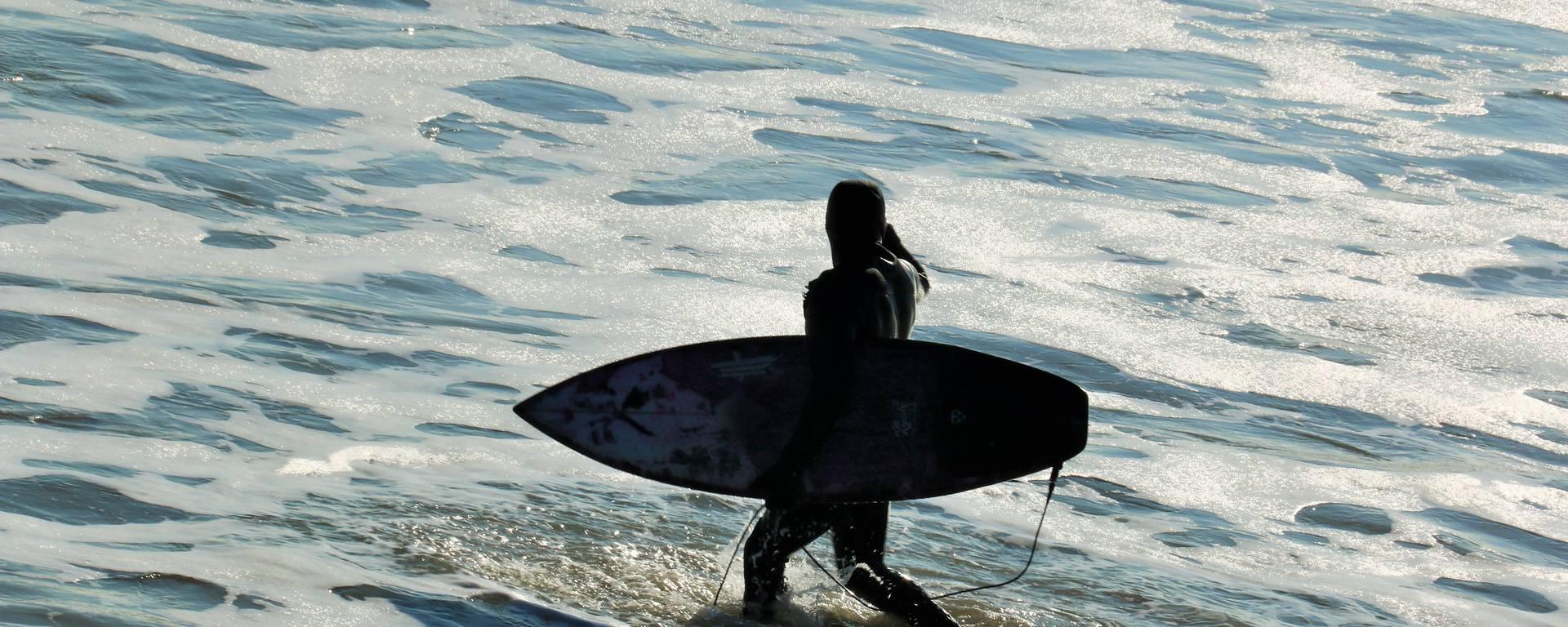 Surf par Lesley  Williamson