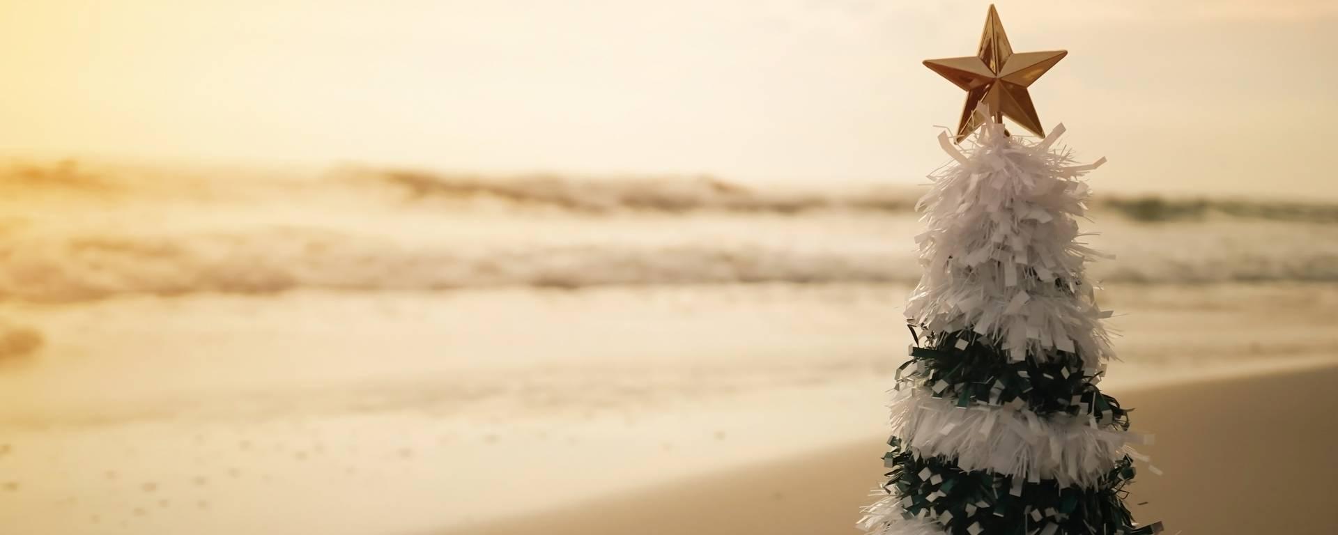 Quelles activitésfaire pour vos vacances de Noël sur l'Ile de Ré (c) pixabay