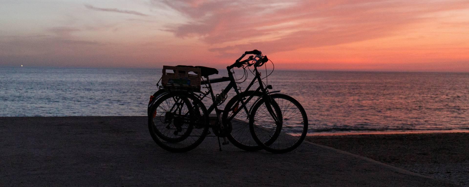 Vélo, Ile de Ré, Mathieu Genon