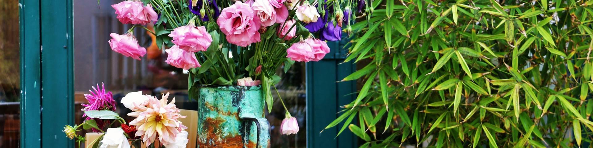 Les fleurs à Ars-en-Ré, Ile de Ré par Lesley Williamson