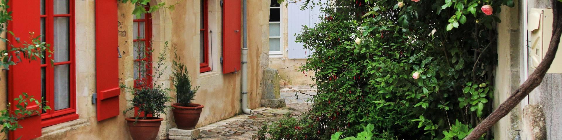 Chambres d'hôtes à Saint-Martin-de-Ré par Lesley Williamson