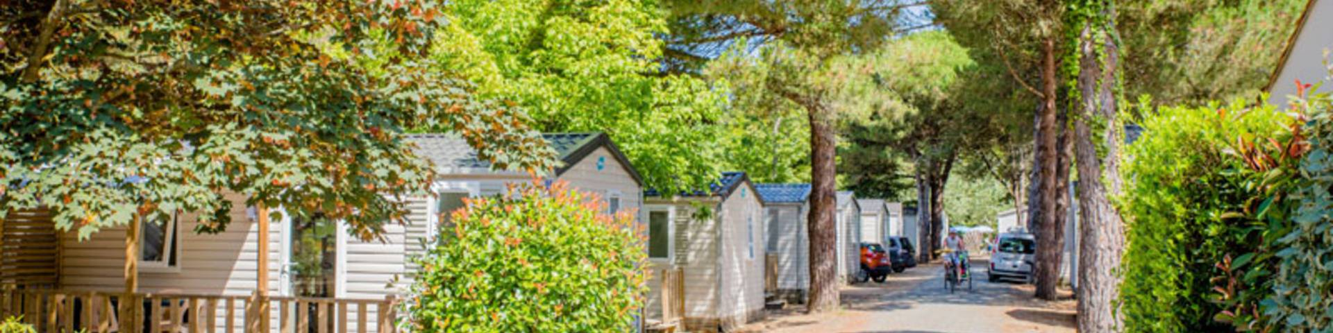 Camping Les Varennes : Le Bois-Plage-en-Ré