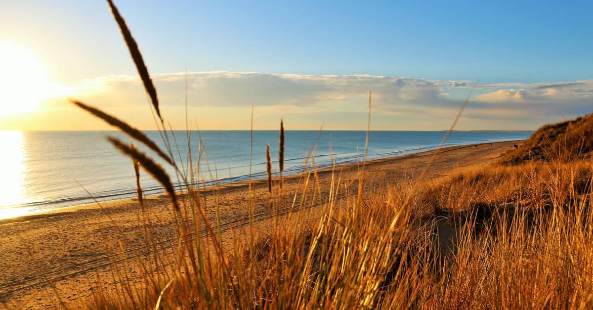 Le bois plage en r destination ile de r site officiel de l 39 office de tourisme - Office de tourisme ars en re ...