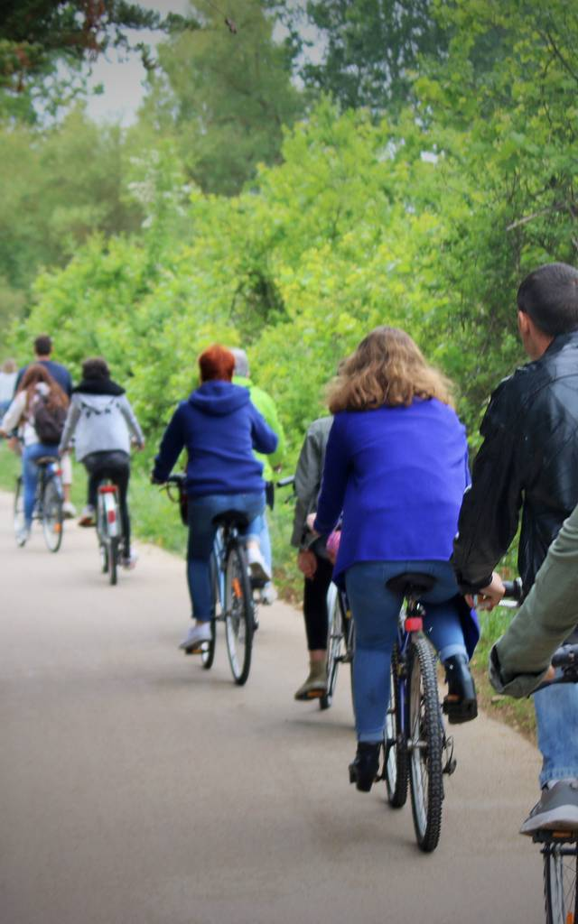 vélos sur l'Ile de Ré