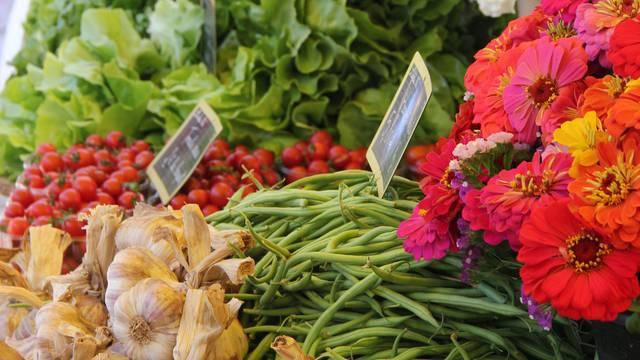 les marchés à Sainte-Marie-de-Ré