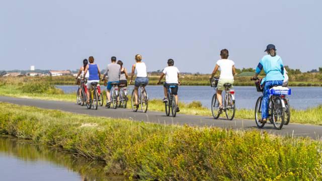 Les locations de vélos à Ars-en-Ré
