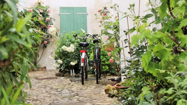Les locations de vélos à Loix