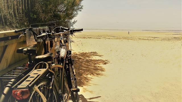Les locations de vélos au Bois-Plage