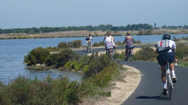 Les locations de vélos aux Portes-en-Ré