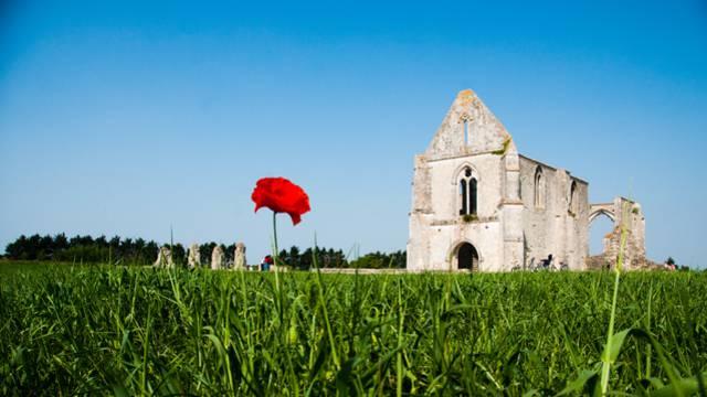 Une île d'art et d'histoire - Abbaye
