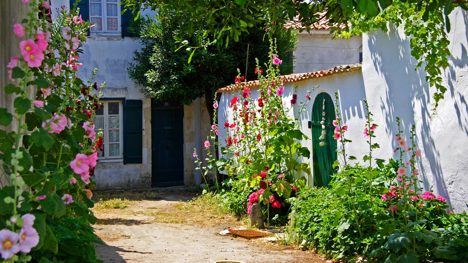 Village vacances rencontres ile de re