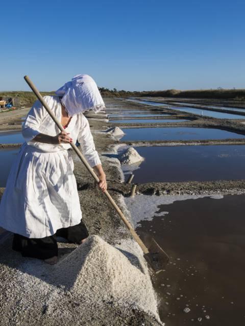 La récolte de sel par François Blanchard