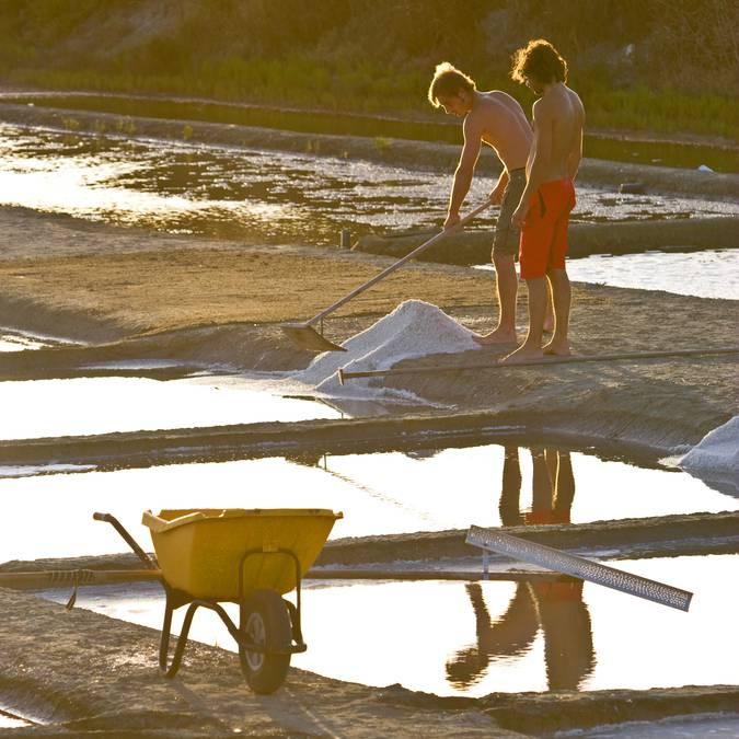 Les sauniers de l'Ile de Ré ©François Blanchard