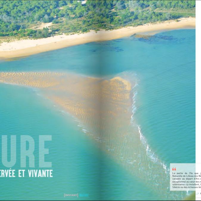 Ile de Ré - Une nature préservée et vivante - page 8