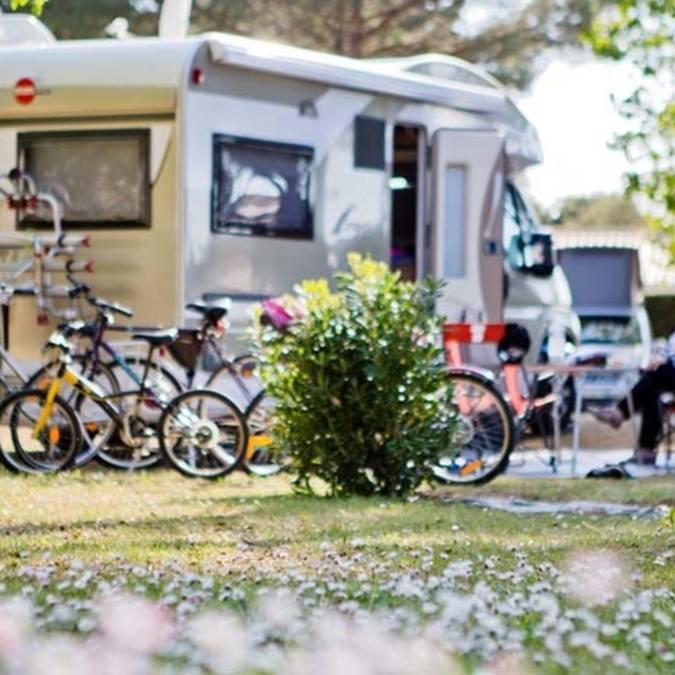 Camping Les Varennes - Le Bois-Plage-en-Ré - Emplacement