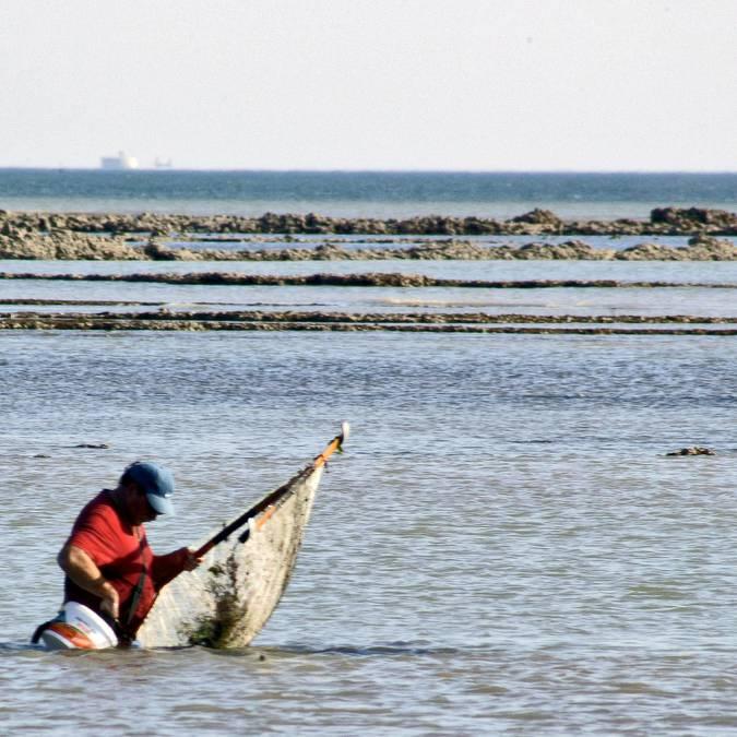 Pêche à pied ©Jac'Phot