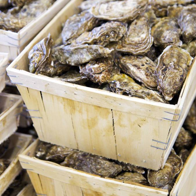 Les huîtres de l'Ile de Ré, ©Yann Werdefroy