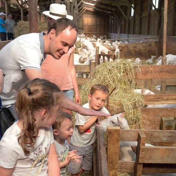 Visite guidée (c) La ferme de Loix