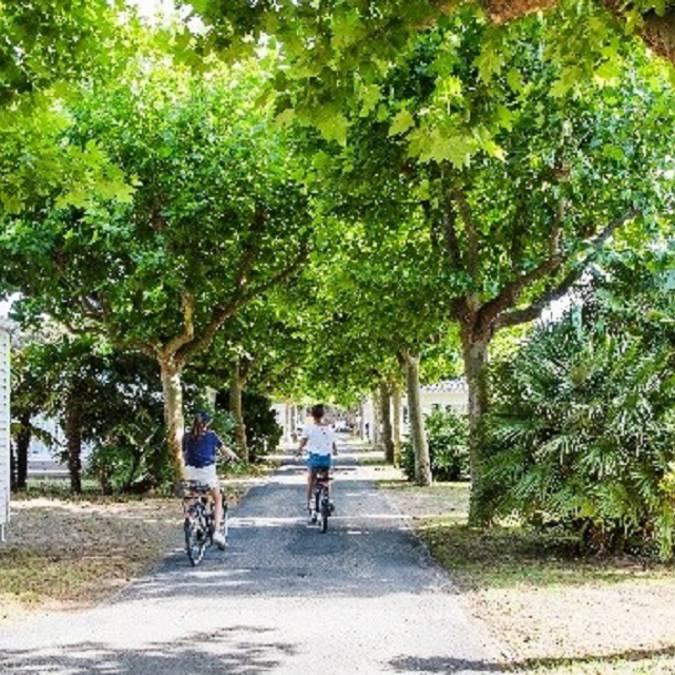 Vélos au sein du camping ©Hôtel de plein air et spa l'Océan **** Eden Village