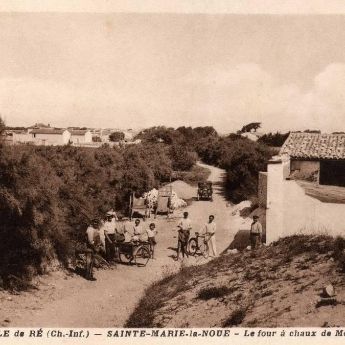 Carte postale de La Noue Montamer